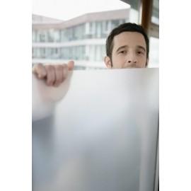 Xenotec Film dépoli autocollant Protection UV 99 % Réduction du rayonnement 30% Résistance du film 50 µ 300 x 76 cm
